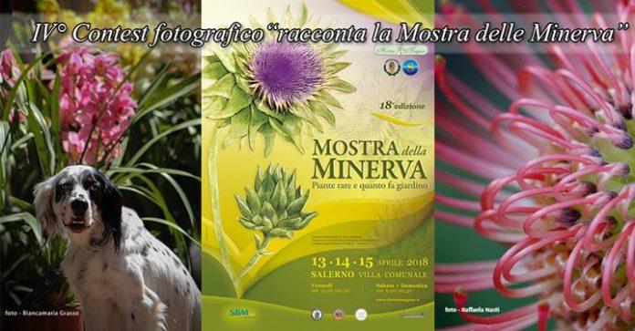 Torna la mostra della minerva la 18a edizione della fiera - Fiera giardinaggio ...